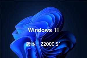Windows11预览版系统下载(新界面)