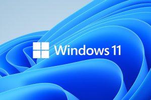 Windows 11 21H2 X64位 纯净专业版